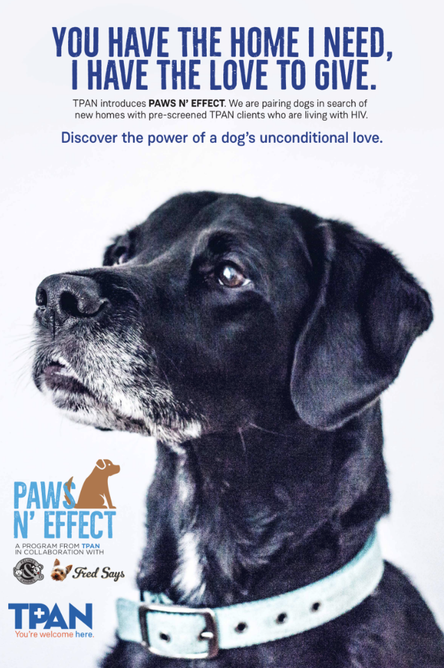 Paws N Effect at TPAN